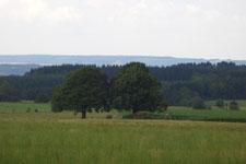 Nabij Wéris - Ardennen België