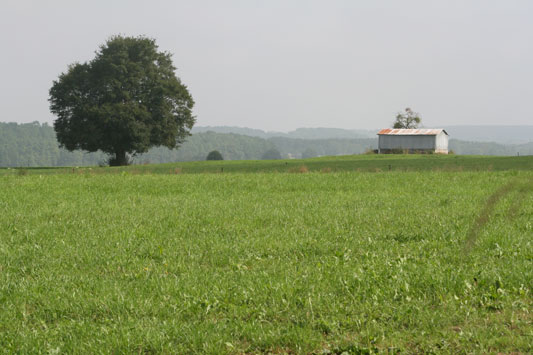 Uitzicht - Ozo - Ardennen België